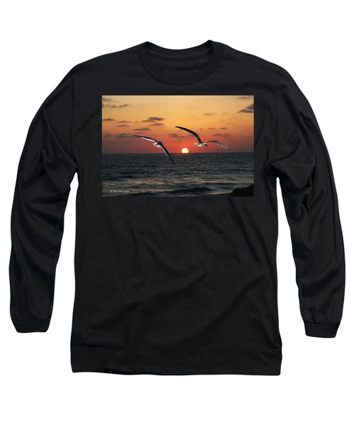 Black Skimmers At Sunset Long Sleeve T-Shirt by Tom Janca