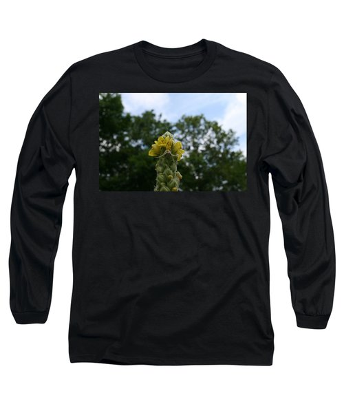 Blended Golden Rod Crab Spider On Mullein Flower Long Sleeve T-Shirt by Neal Eslinger