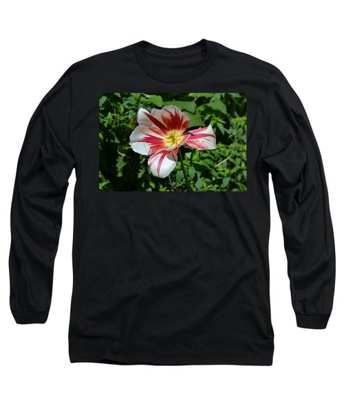 Long Sleeve T-Shirt featuring the photograph Bloom by Tara Potts