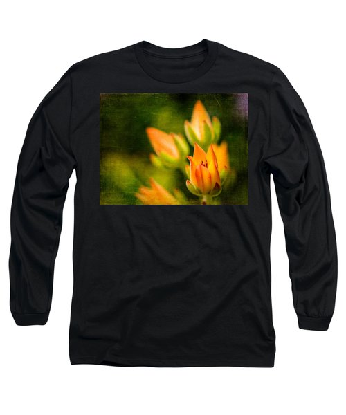 Blooming Succulents IIi Long Sleeve T-Shirt