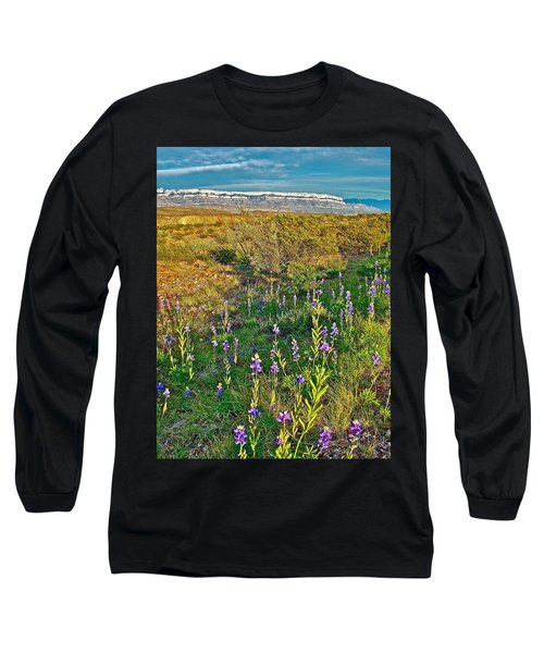 Bluebonnets And Creosote Bushes In Big Bend National Park-texas Long Sleeve T-Shirt
