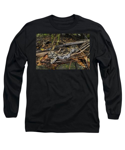 Boa Constrictor Long Sleeve T-Shirt by Francesco Tomasinelli