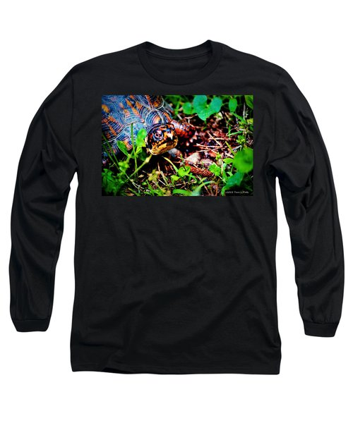 Box Turtle Long Sleeve T-Shirt