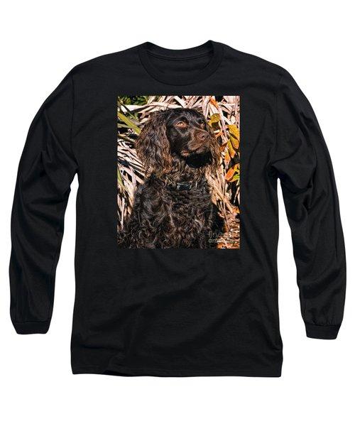 Boykin Spaniel Portrait Long Sleeve T-Shirt by Timothy Flanigan