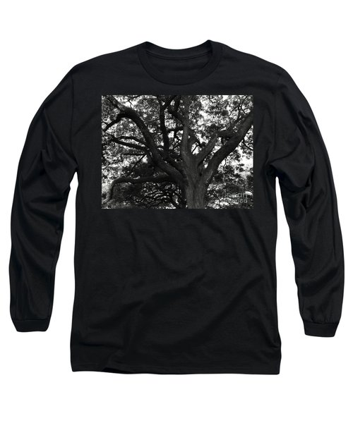 Branches Of Life Long Sleeve T-Shirt