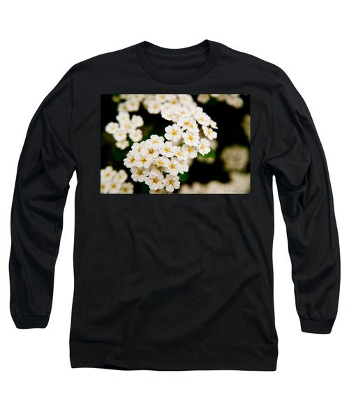 Long Sleeve T-Shirt featuring the photograph Bridal Veil Spirea by Brenda Jacobs