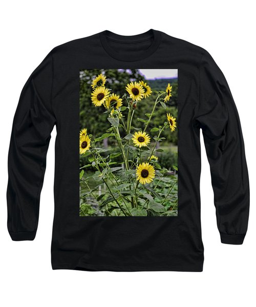 Long Sleeve T-Shirt featuring the photograph Bright Sunflowers by Denise Romano