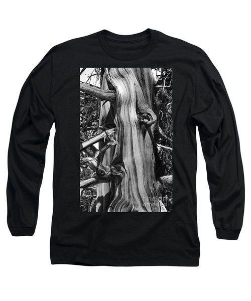 Long Sleeve T-Shirt featuring the photograph Bristle-cone Pine-2 by Mae Wertz