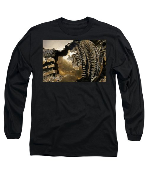 Bronze Abstract Long Sleeve T-Shirt by Stuart Litoff