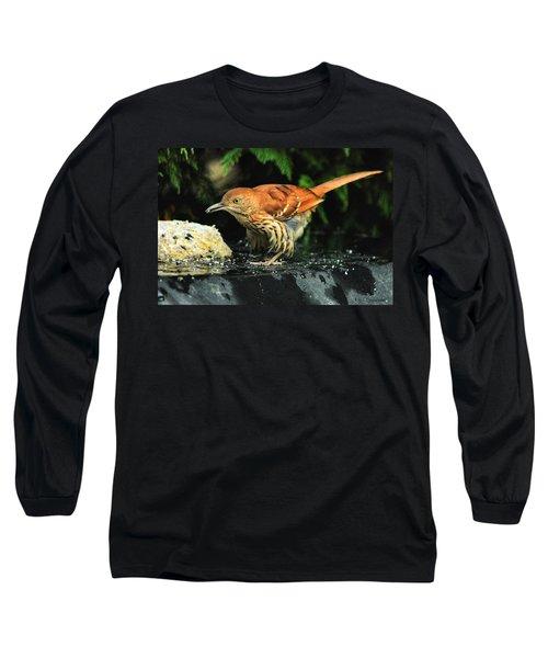 Brown Thrasher Long Sleeve T-Shirt