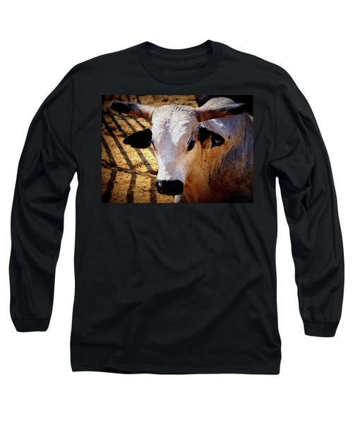 Bull Riders - Nightmare - Rodeo Bull Long Sleeve T-Shirt