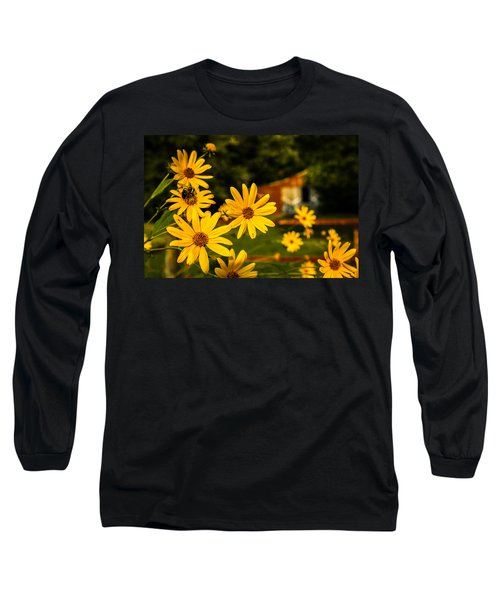 Bumble Bee On A Western Sunflower Long Sleeve T-Shirt