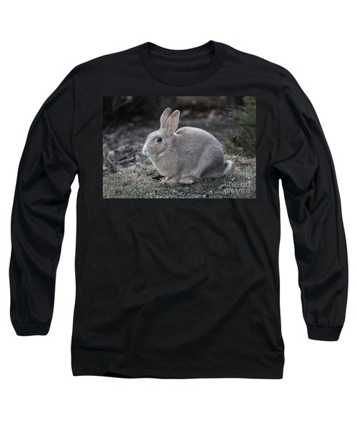 Long Sleeve T-Shirt featuring the photograph Bunny by Ann E Robson