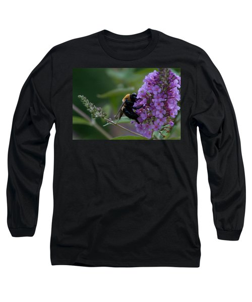 Busy Bee Long Sleeve T-Shirt by Greg Graham