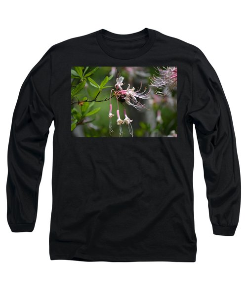 Long Sleeve T-Shirt featuring the photograph Busy Bee by Tara Potts