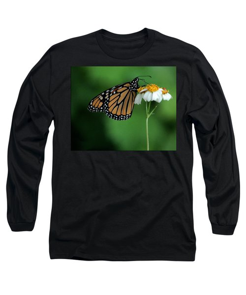 Long Sleeve T-Shirt featuring the photograph Butterfly 3 by Leticia Latocki
