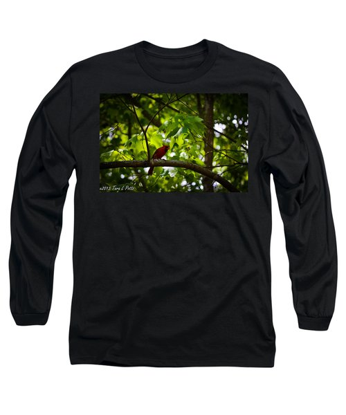 Cardinal In The Trees Long Sleeve T-Shirt