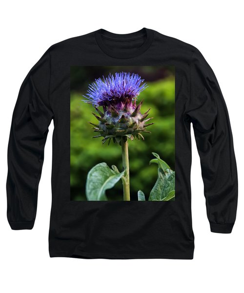 Cardoon Long Sleeve T-Shirt by Chris Flees