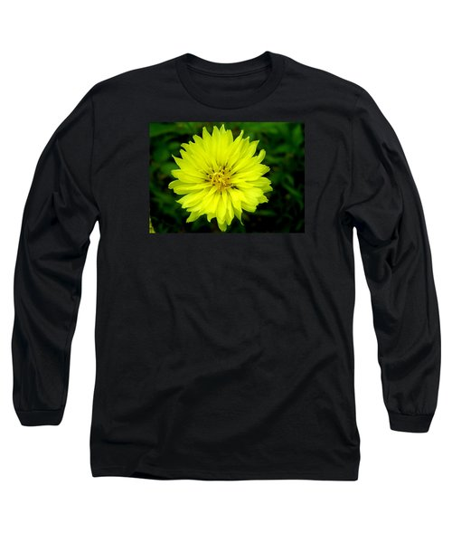 Wild Carolina Desert Chicory Long Sleeve T-Shirt by William Tanneberger