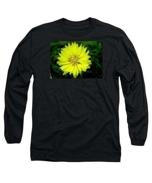 Wild Carolina Desert Chicory Long Sleeve T-Shirt