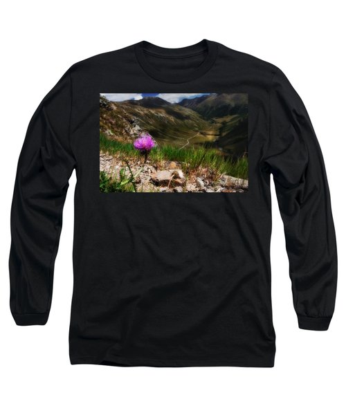 Centaurea Long Sleeve T-Shirt