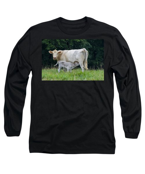 Charolais Cattle Nursing Young Long Sleeve T-Shirt by Chris Flees
