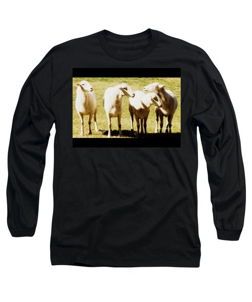 Long Sleeve T-Shirt featuring the photograph Cheviot Sheep by Kathy Barney