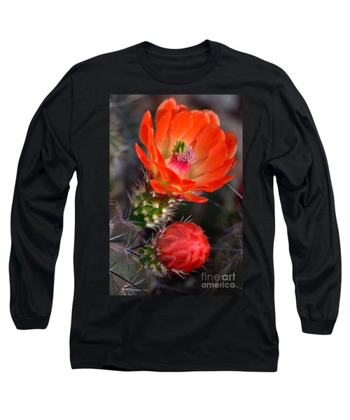 Claret Cup Cactus Long Sleeve T-Shirt by Deb Halloran