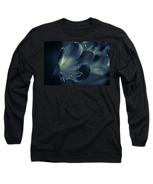Clivia Miniata II Long Sleeve T-Shirt
