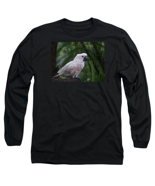 Cockatoo Long Sleeve T-Shirt by Athala Carole Bruckner
