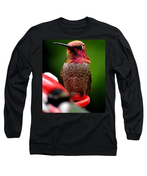 Long Sleeve T-Shirt featuring the photograph Colorful Male Anna Hummingbird On Perch by Jay Milo