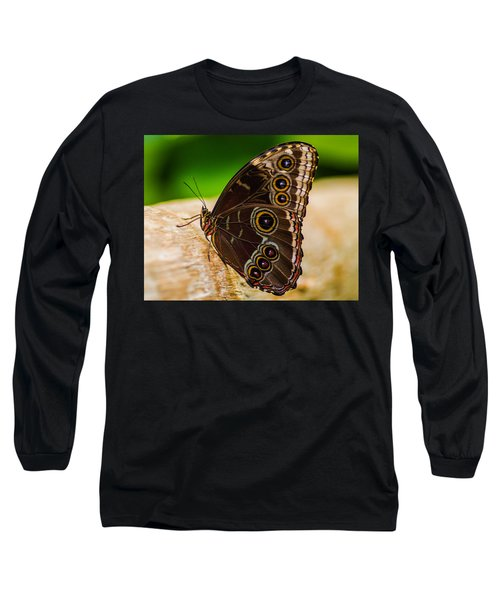 Colour Display Long Sleeve T-Shirt