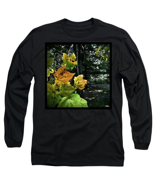 Coming Of Fall Long Sleeve T-Shirt