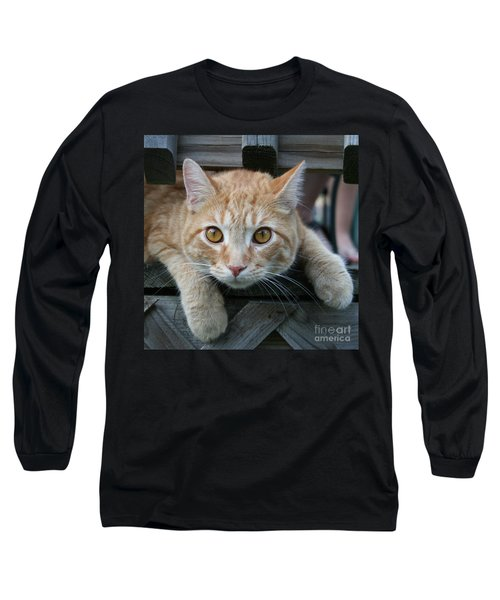 Cool Cat Named Calvin Long Sleeve T-Shirt