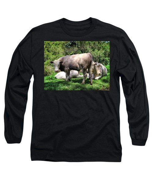 Long Sleeve T-Shirt featuring the photograph Cow 5 by Dawn Eshelman