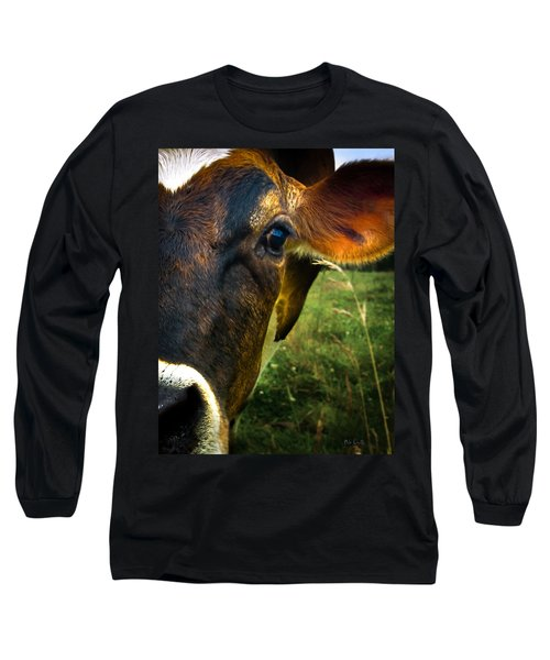 Cow Eating Grass Long Sleeve T-Shirt by Bob Orsillo