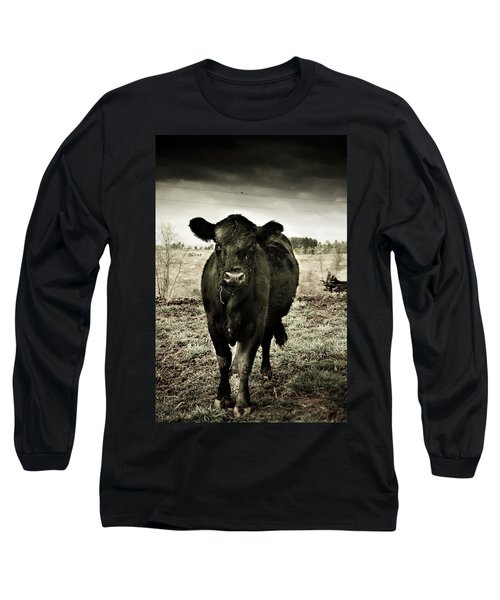 Cow In The Winter Pasture  Long Sleeve T-Shirt