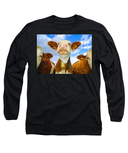 Cow Looking At You - Funny Animal Picture Long Sleeve T-Shirt