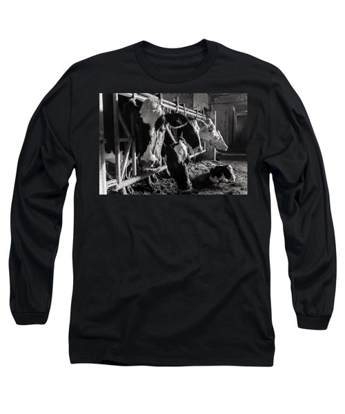 Cows In The Barn2 Long Sleeve T-Shirt