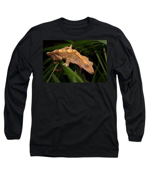 Crested Gecko Rhacodactylus Ciliatus Long Sleeve T-Shirt