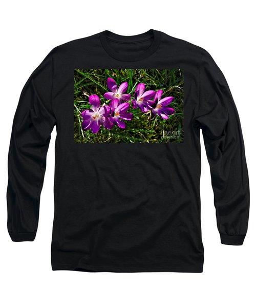 Crocus In The Grass Long Sleeve T-Shirt