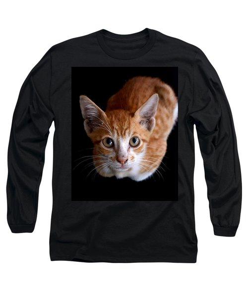 Cute Kitten Long Sleeve T-Shirt