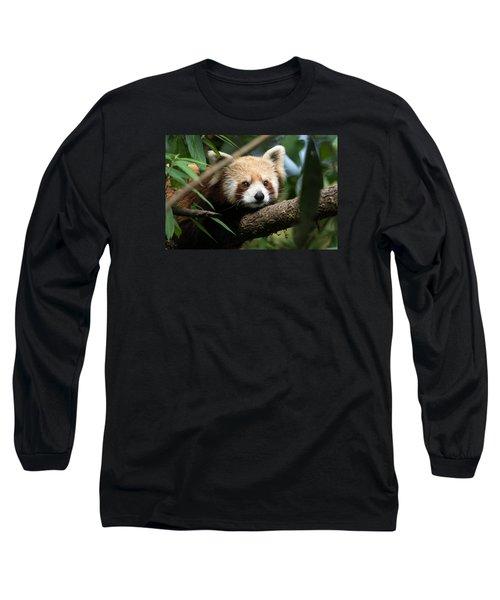 Cute Panda Long Sleeve T-Shirt by Fotosas Photography