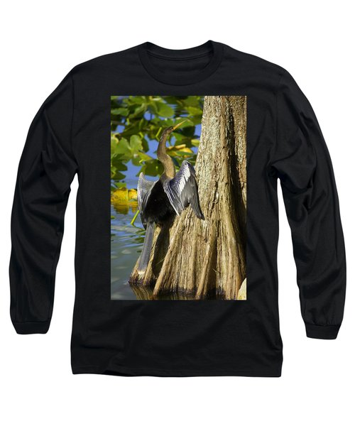 Cypress Bird Long Sleeve T-Shirt by Laurie Perry