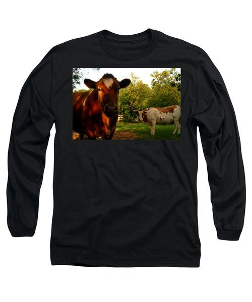 Dads Cows Long Sleeve T-Shirt