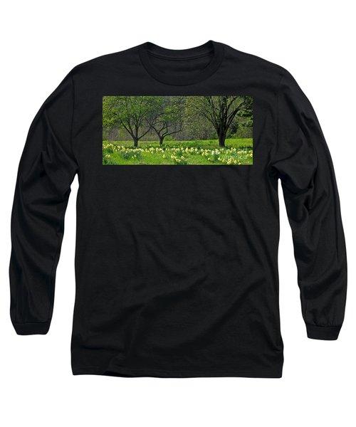 Daffodil Meadow Long Sleeve T-Shirt by Ann Horn