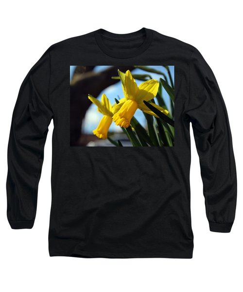 Daffodils Long Sleeve T-Shirt by Joseph Skompski