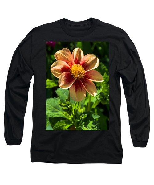 Dahlia 4 Long Sleeve T-Shirt