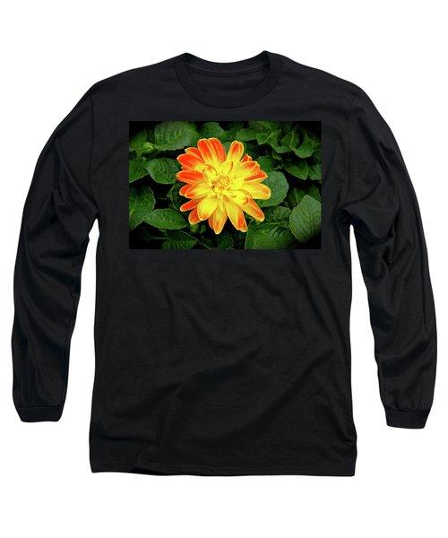 Dahlia Long Sleeve T-Shirt by Ed  Riche