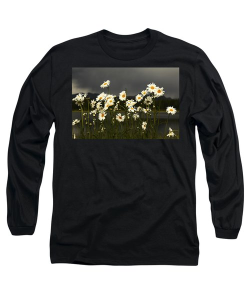 Daisies In Storm Light Long Sleeve T-Shirt